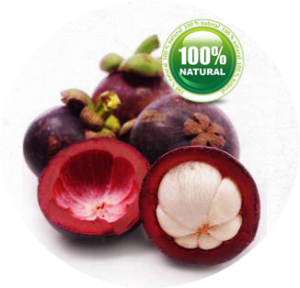 is Garcinia Cambogia safe