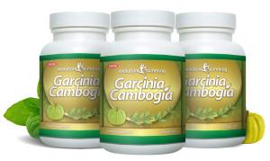 garcinia cambogia evolution slimming